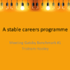 a-stable-careers-programme-1